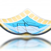 Sushi Plate Glass Fusion in Gold and Aqua by Fire Glass Studio